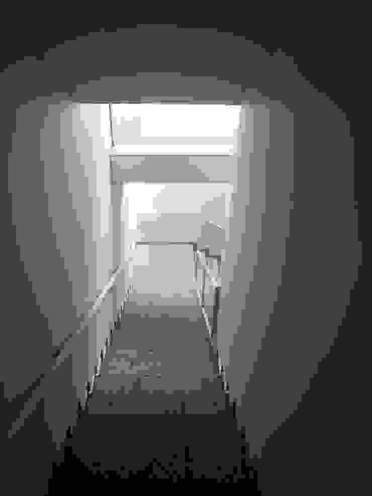 地階ね繋がる階段 久保田章敬建築研究所 Moderne Bürogebäude