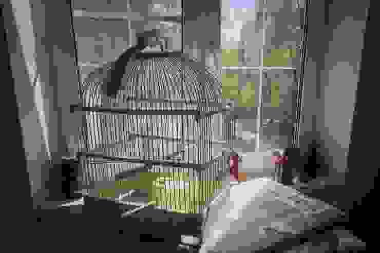 Из однушки в трешку – квартира в Москве Татьяна Апрельская - Бесплатный ремонт! Домашнее хозяйство Аксессуары для животных