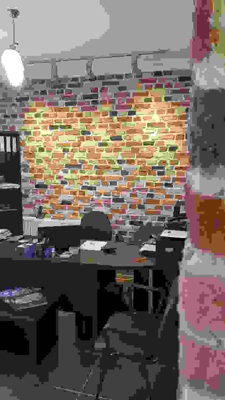anatolia stone Modern Evler anatolia stone dekoratif taş ve panel sistemeri Modern