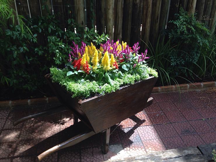 Projeto para um carrinho de flores: Jardins  por Casa Nova Paisagismo