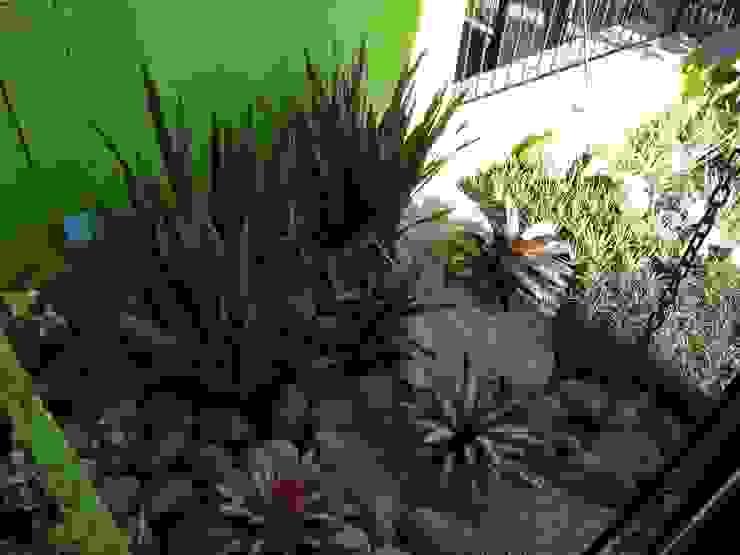 Garden by Casa Nova Paisagismo, Rustic