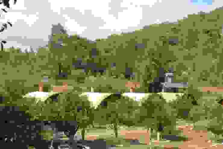 Simurg Evleri Pansiyon Mediterranean style houses