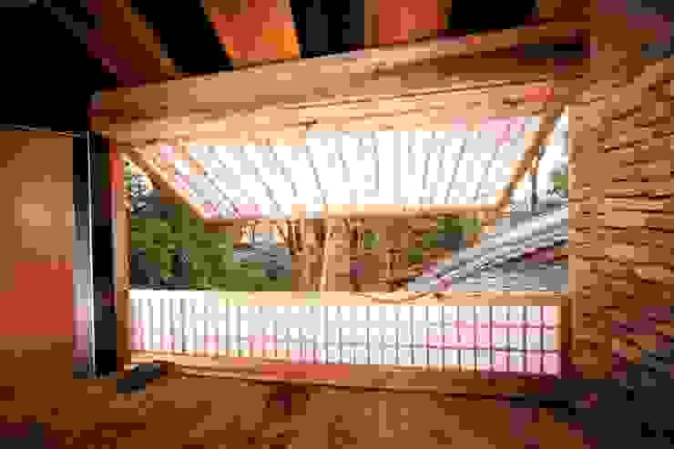 Tree house オリジナルな 窓&ドア の 建築設計事務所 山田屋 オリジナル