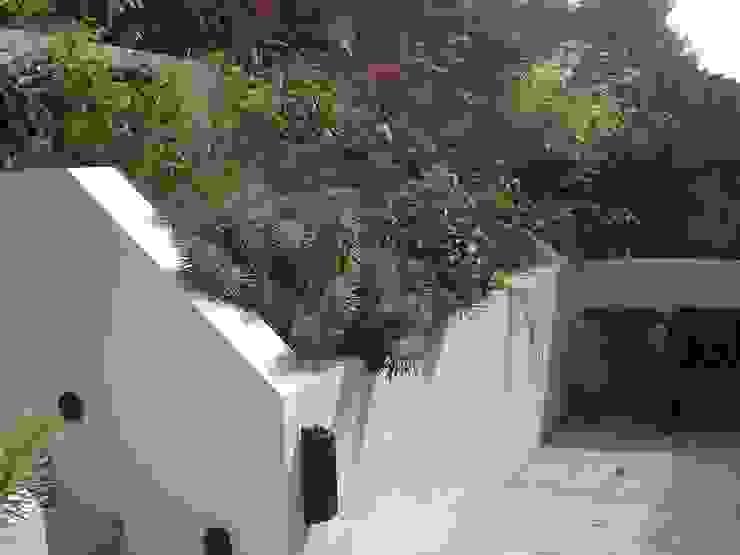 Contemporary planting por Imperfect Interiors Escandinavo