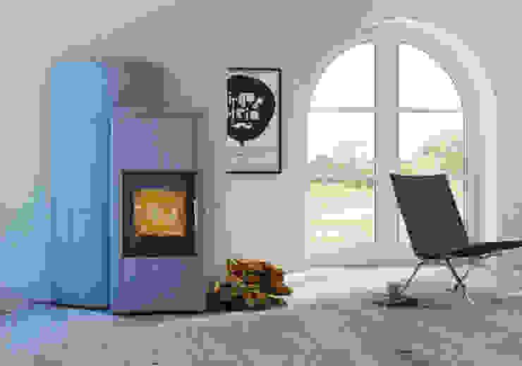 Speicherofen Bernhard Schleicher e.K. Living roomFireplaces & accessories