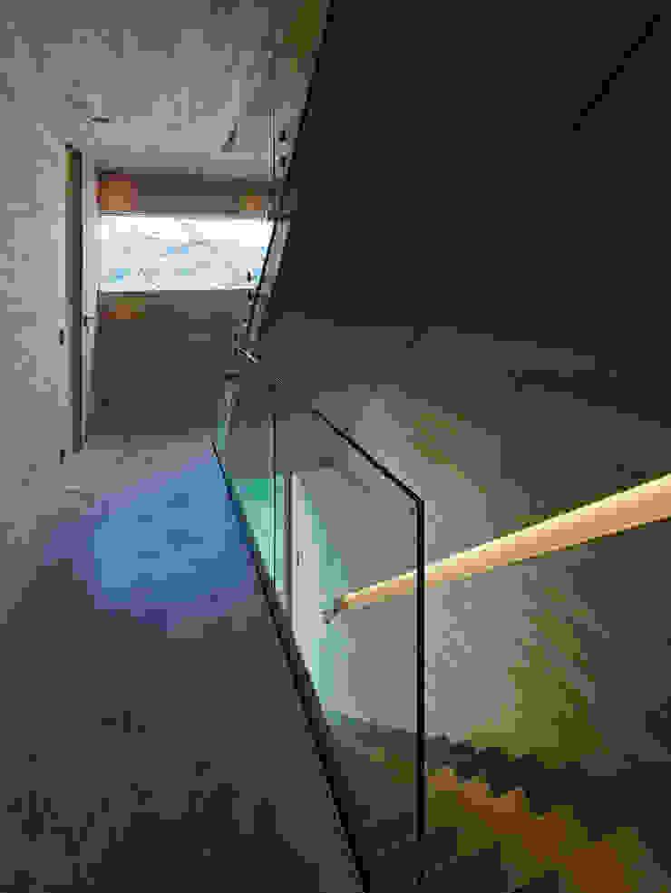Modern Corridor, Hallway and Staircase by HAMMERER ztgmbh . architekten Modern