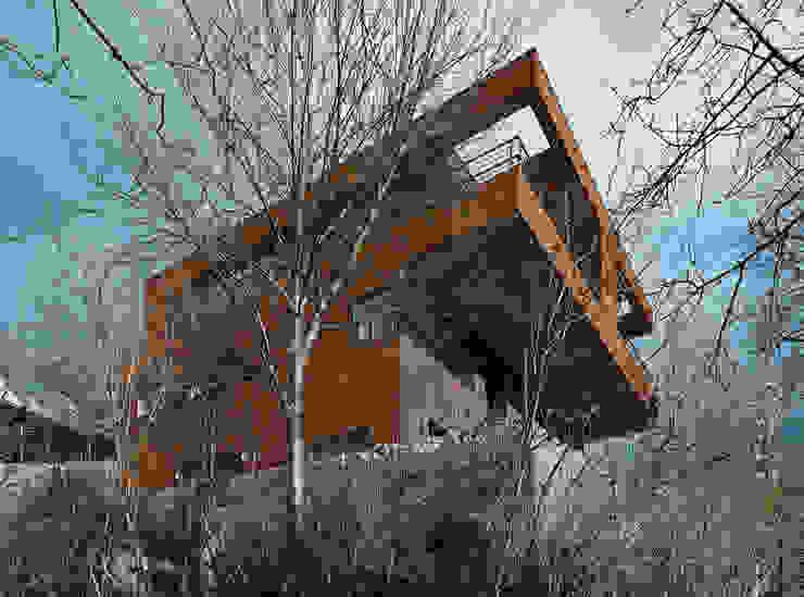 Nowoczesne domy od HAMMERER Architekten GmbH/SIA Nowoczesny