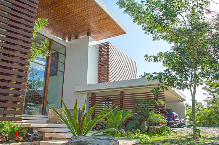 Tropical style houses by Ancona + Ancona Arquitectos Tropical