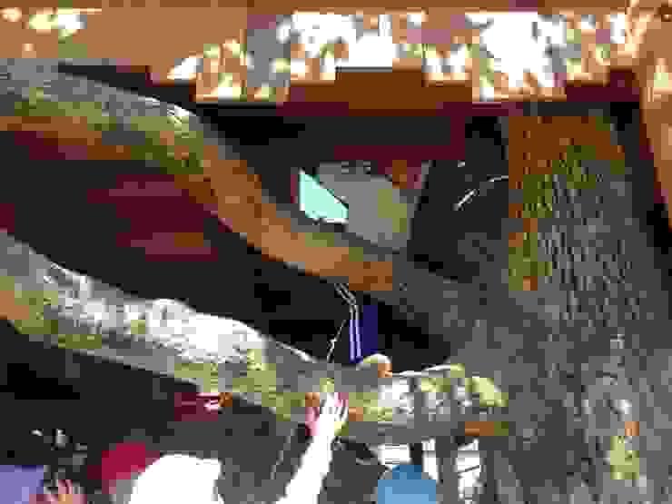 木登り オリジナルな 庭 の 株式会社フィンオール オリジナル