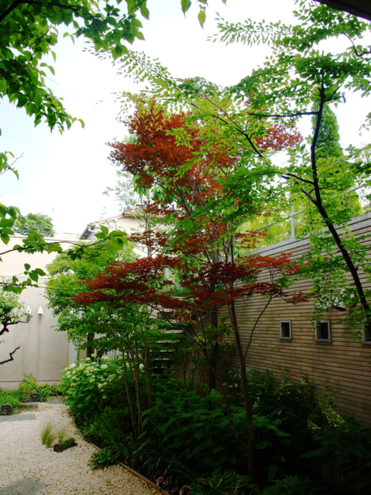 Eclectic style garden by NICO株式会社 Eclectic