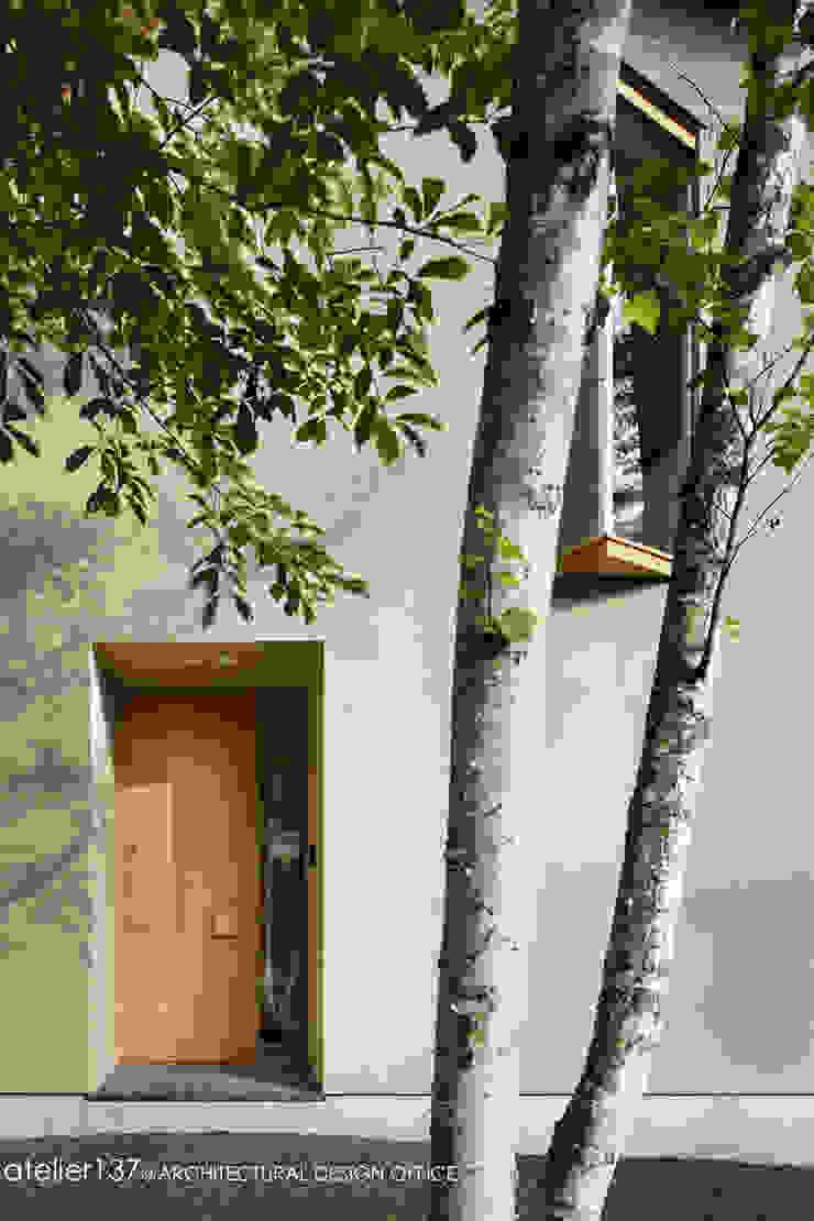 031軽井沢Tさんの家 モダンな 窓&ドア の atelier137 ARCHITECTURAL DESIGN OFFICE モダン