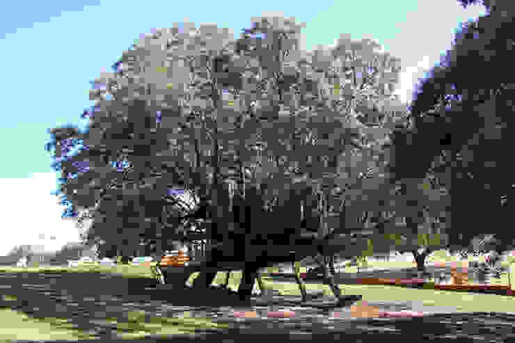 Casa en el árbol enraizada. Casas de estilo rural de Urbanarbolismo Rural