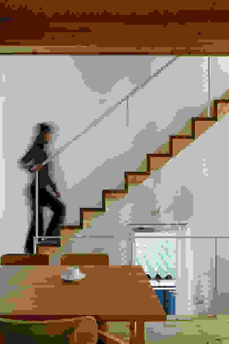 White hut and Tilia japonica Pasillos, vestíbulos y escaleras de estilo ecléctico de 高橋真紀建築設計事務所 Ecléctico