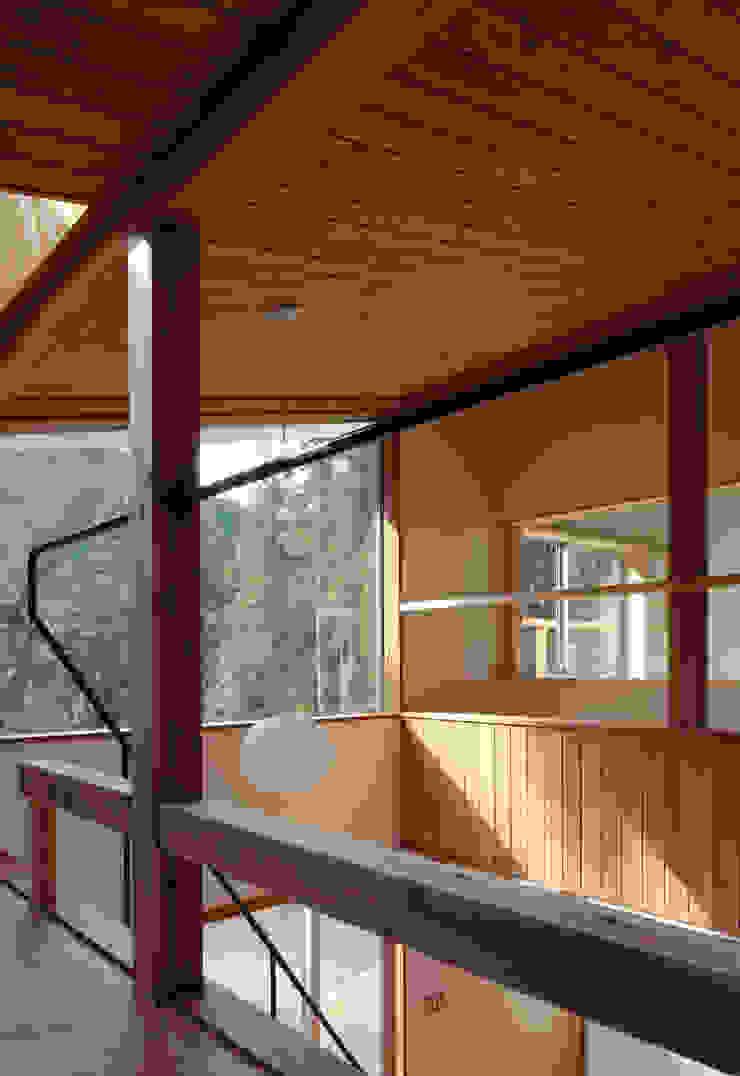 日高の家 モダンな 窓&ドア の TAMAI ATELIER モダン