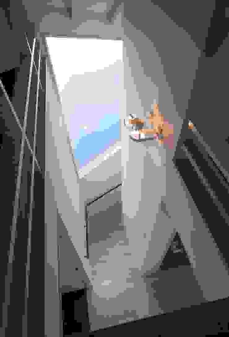 井の頭の家 モダンな 壁&床 の TAMAI ATELIER モダン