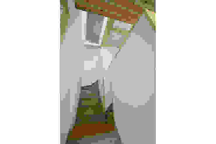 新潟の家 階段 モダンスタイルの 玄関&廊下&階段 の 腰越耕太建築設計事務所 モダン
