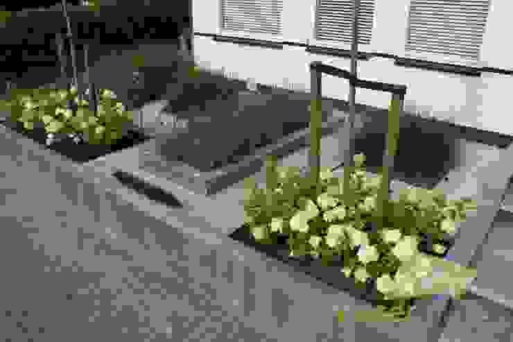 Visser Tuinen Modern garden