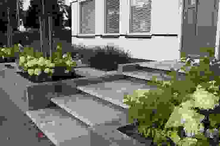 Jardines de estilo moderno de Visser Tuinen Moderno