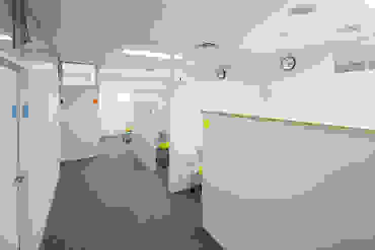 Estudios y oficinas modernos de 一級建築士事務所シンクスタジオ Moderno