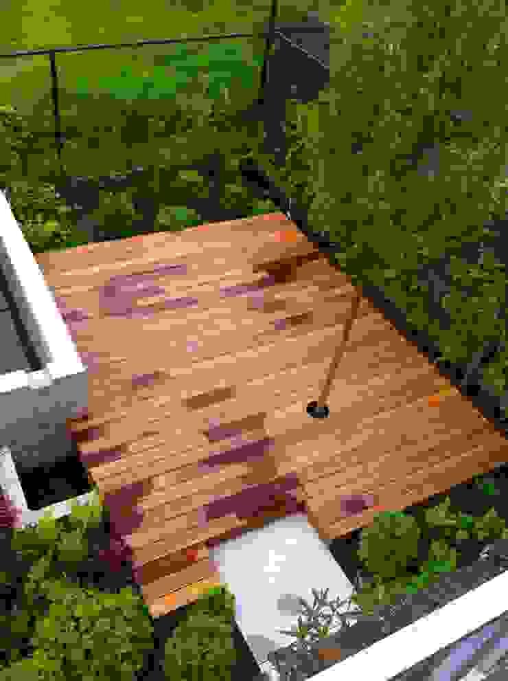 Bamboe terrassen Moderne tuinen van Michel D'Hondt Tuinarchitect Modern