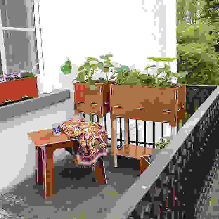 Werkhaus Design + Produktion GmbH 陽台、門廊與露臺 植物與花