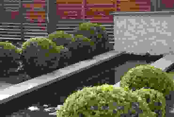 Vijver met buxusbollen Moderne tuinen van Ontwerpstudio Angela's Tuinen Modern