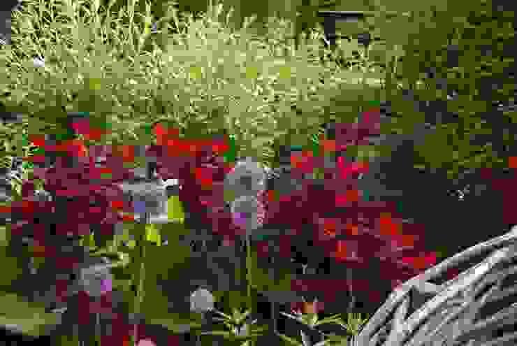 Kleur en vorm Ontwerpstudio Angela's Tuinen Moderne tuinen