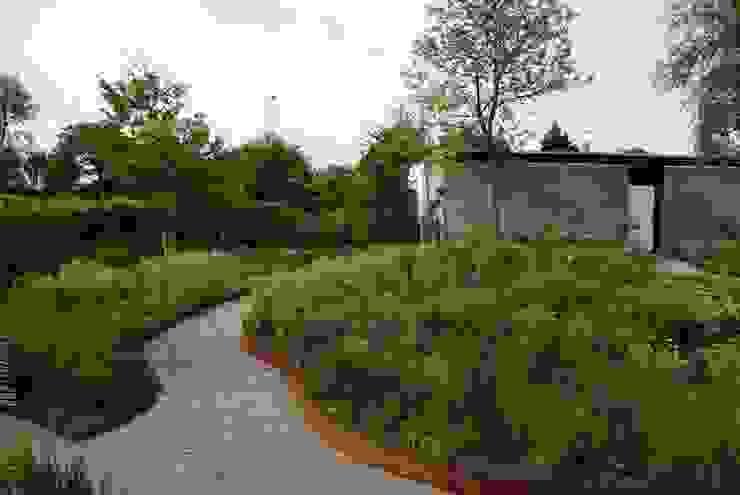 Projekty,  Ogród zaprojektowane przez Ontwerpstudio Angela's Tuinen, Nowoczesny