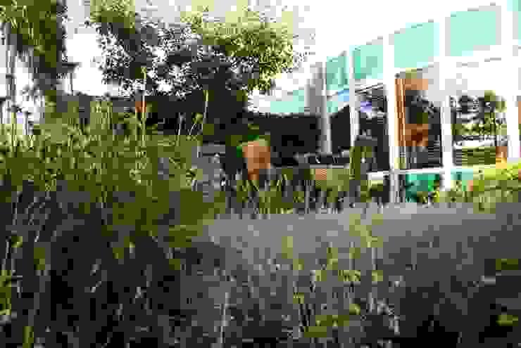Wintergroen Moderne tuinen van Ontwerpstudio Angela's Tuinen Modern