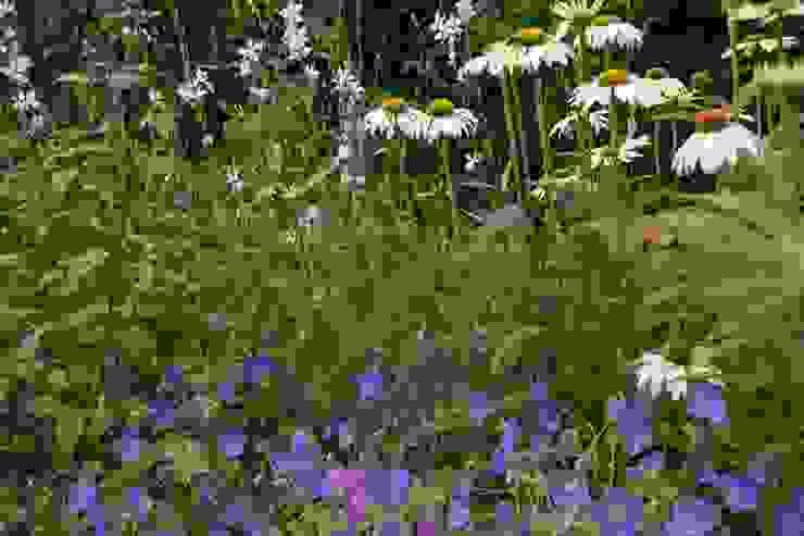 Moderner Garten von Ontwerpstudio Angela's Tuinen Modern