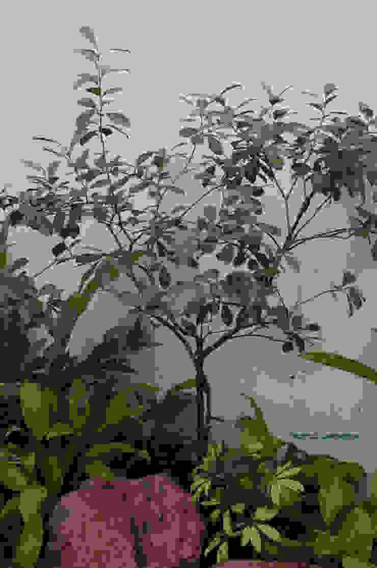 JARDINES PEQUEÑOS Jardines tropicales de Tropico Jardineria Tropical