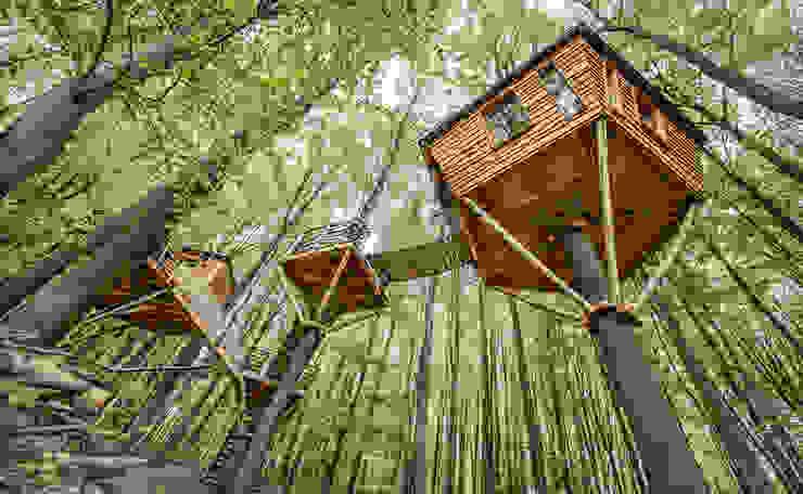 Luftschlösser Baumhausprojekte _ Baumhausherberge Robins Nest Ausgefallene Hotels von Luftschlösser Ausgefallen