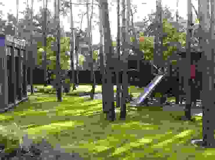 domek na drzewie od Zielony Architekt