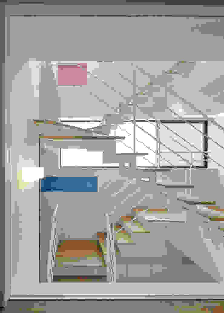 光の筒としての階段 モダンスタイルの 玄関&廊下&階段 の 平野智司計画工房 モダン 木 木目調
