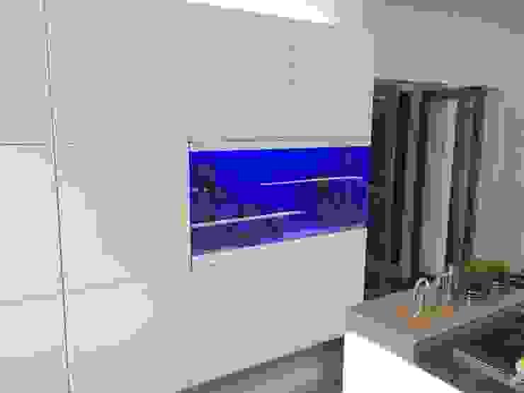 Kitchen Aquarium, Ayr Moderne Küchen von DC Aquariums Modern