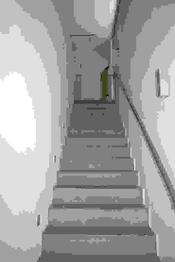 Ingenieurbüro für Planung und Projektmanagement Hangs Modern Corridor, Hallway and Staircase