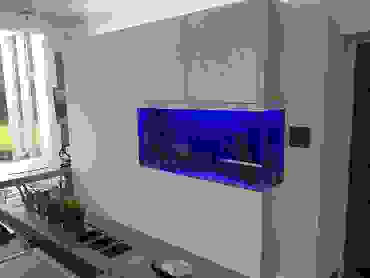 Kitchen Aquarium, Ayr モダンな キッチン の DC Aquariums モダン