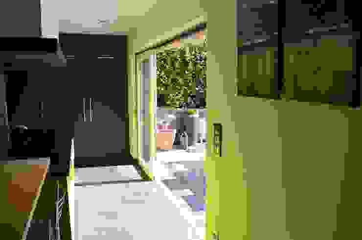 Modern windows & doors by DCA Modern