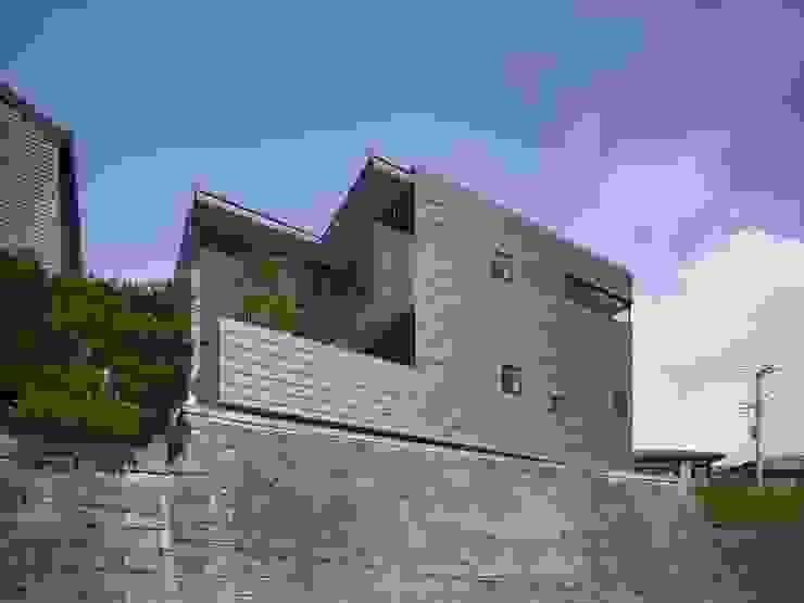 AY 庭とパティオのある家 モダンな 家 の 山縣洋建築設計事務所 モダン アルミニウム/亜鉛