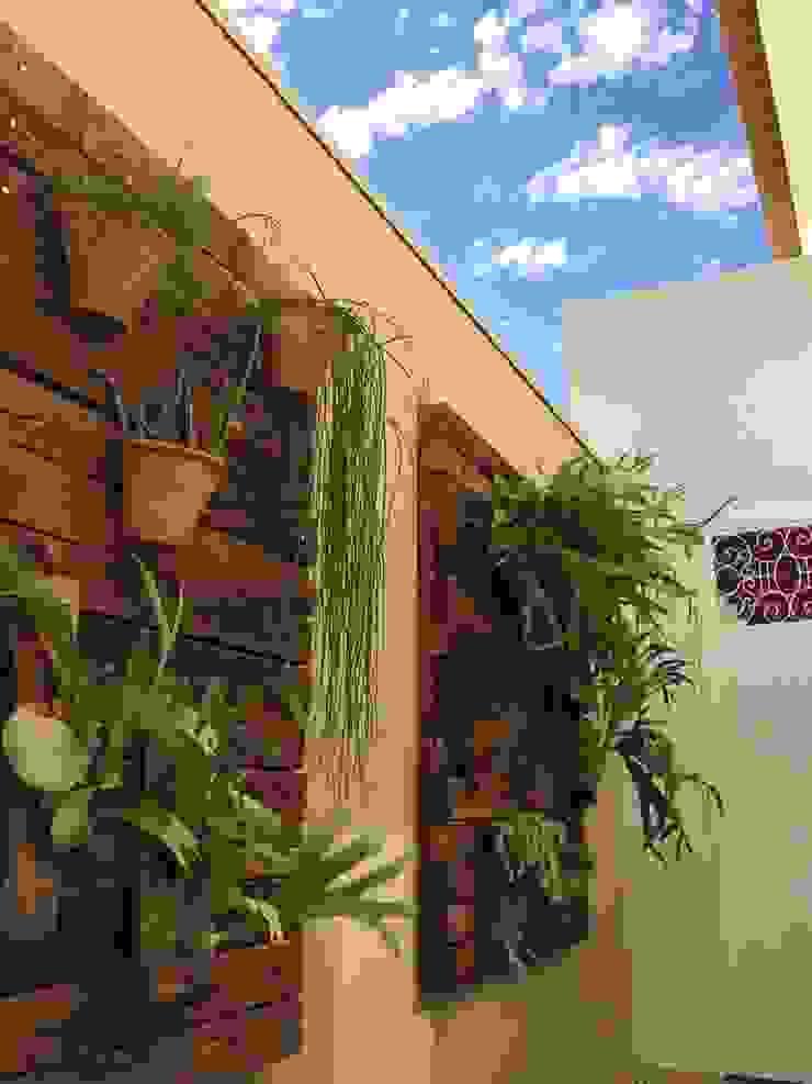 Jardim vertical Jardins tropicais por Celina Molinari Arquitetura e Interiores Tropical