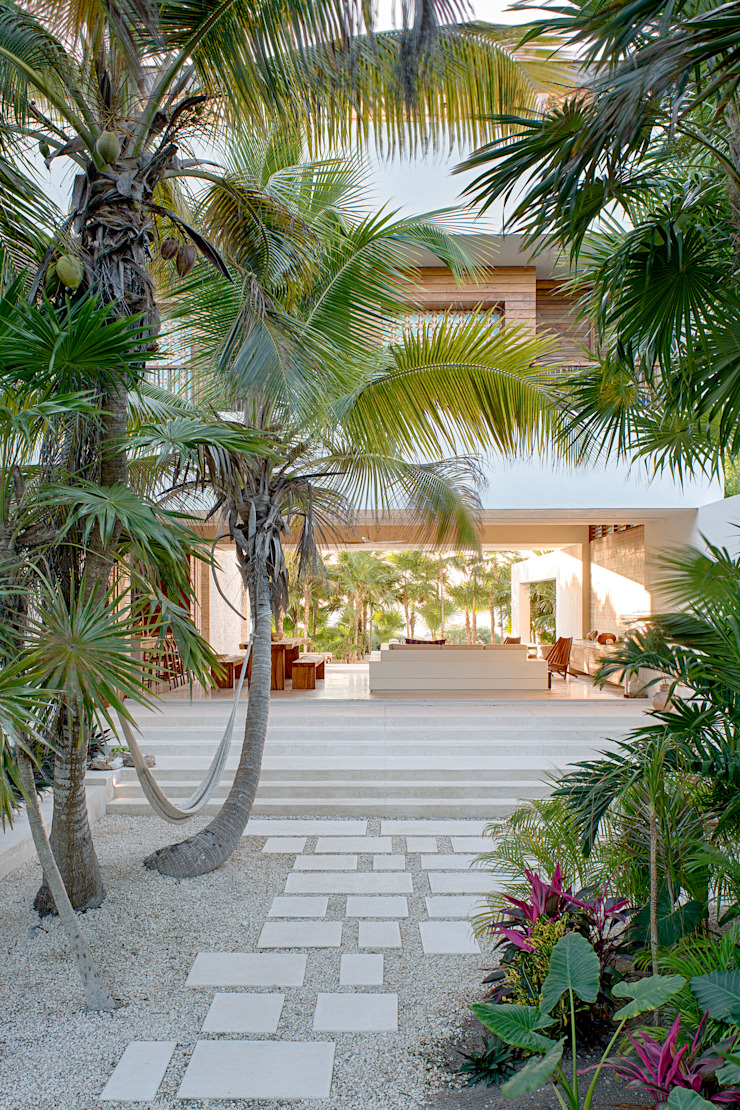 Casa Xixim Tropical style houses by Specht Architects Tropical