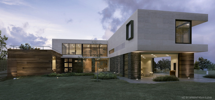 Elena Arsentyeva Modern houses
