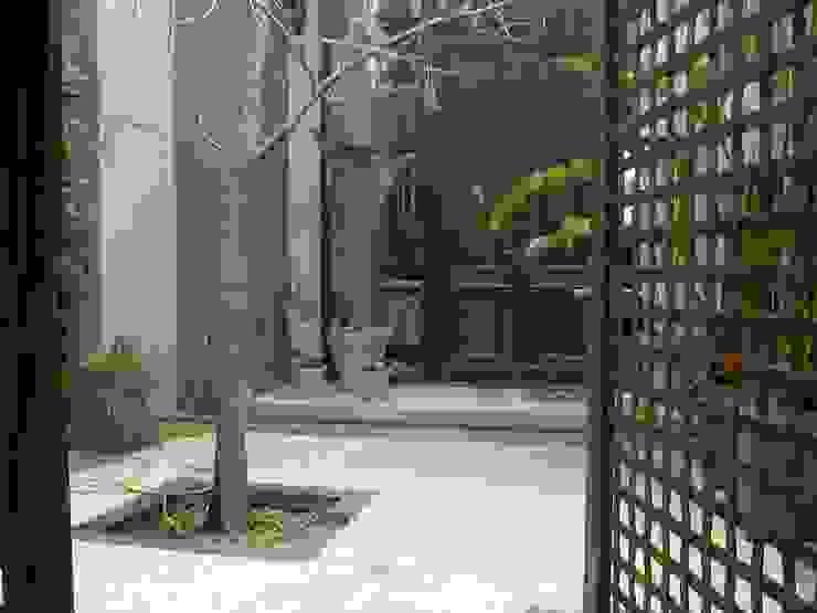 c Jardines asiáticos de BAIRES GREEN MUEBLES Asiático