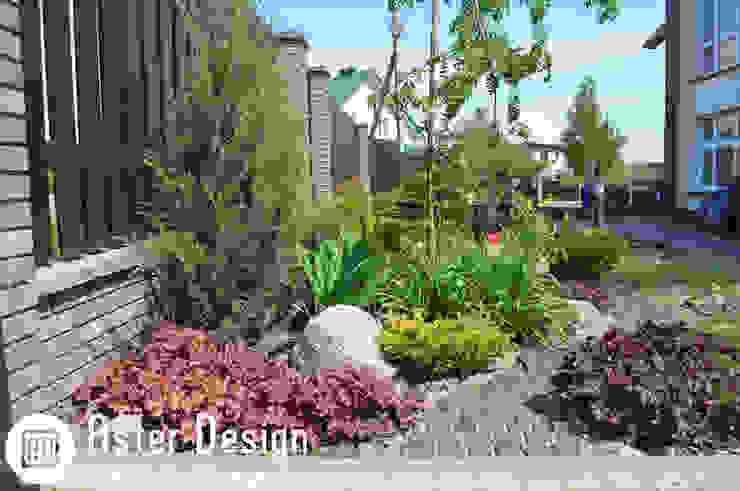 Jardin de style  par Aster Garden