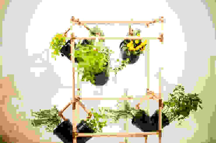 Jardín de estilo  por Mono Studio,
