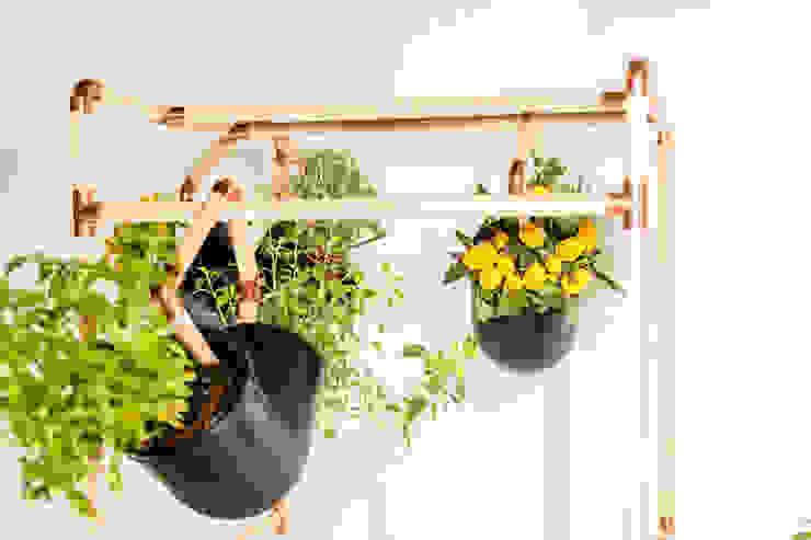 Mono Studio JardimPotes e vasos