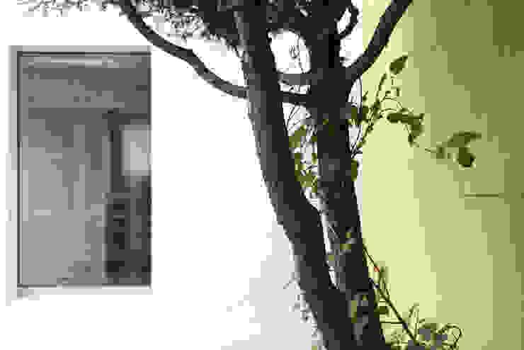 Modern style gardens by MELANIE LALLEMAND ARCHITECTURES Modern