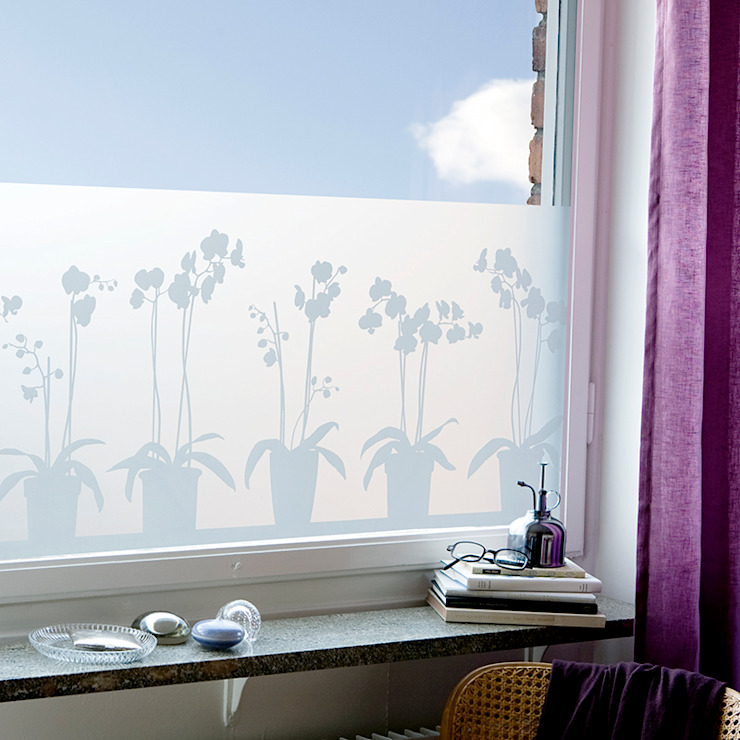 Orchids in Pots: scandinavian  by BY MAY/ Siluett Frost Window Film, Scandinavian