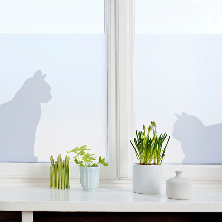 Cats in window od BY MAY/ Siluett Frost Window Film Minimalistyczny
