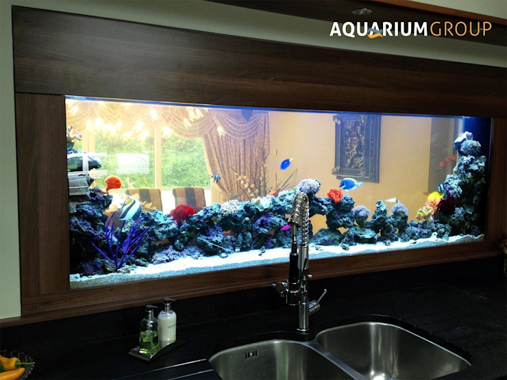 Through Wall Kitchen Splashback Aquarium Cuisine moderne par AquariumGroup Moderne